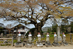 8番西善寺の6地蔵