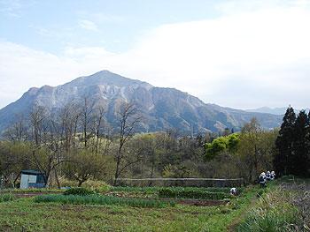 小さな畑と武甲山