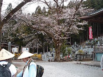 26番円融寺