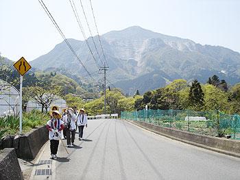 武甲山を背に春の花を楽しむ